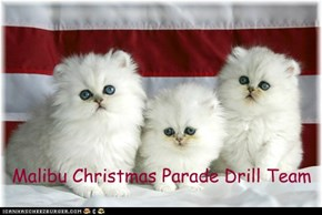 Malibu Christmas Parade Drill Team