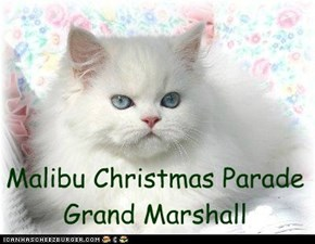 Malibu Christmas Parade Grand Marshall