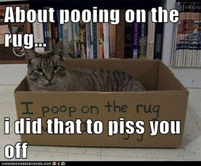 About pooing on the rug...  i did that to piss you off