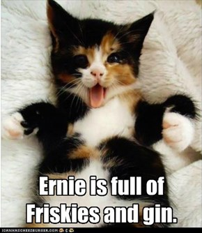 Ernie is full of Friskies and gin.