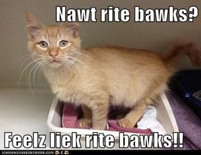 Nawt rite bawks?  Feelz liek rite bawks!!