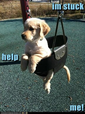 im stuck  help me!