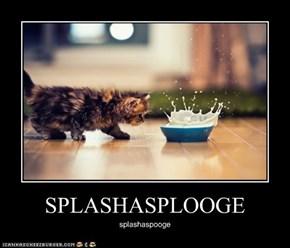 SPLASHASPLOOGE