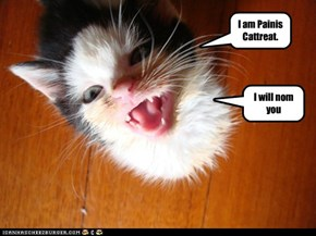 I am Painis Cattreat.
