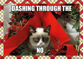 Grumpy Cat has the Holiday Spirit