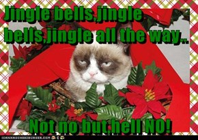 Jingle bells,jingle bells,jingle all the way..         Not no but,hell NO!