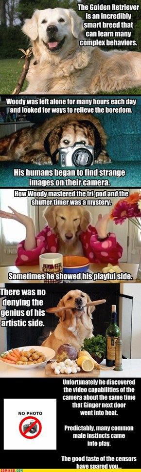 The good news is you have a very smart dog...