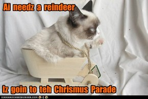 Iz  goin  to  teh  Chrismus  Parade