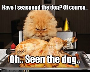 Have I seasoned the dog? Of course..