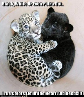 Black, White Or Even Polka Dot..   True Colors Lie In The Heart And Deeds!!!