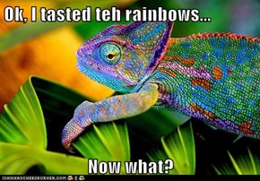 Ok, I tasted teh rainbows...  Now what?