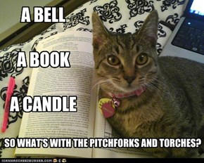 A BELL  A BOOK  A CANDLE