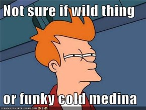 Not sure if wild thing  or funky cold medina