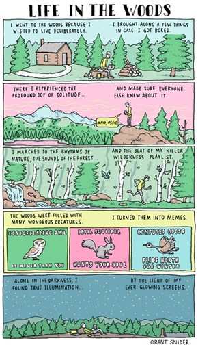 Webcomic of the Day: Life in the Woods
