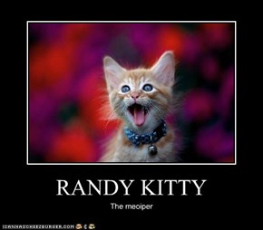 RANDY KITTY