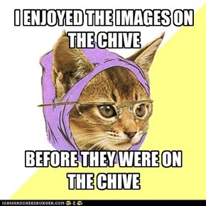 Hipster cat doesn't enjoy the Chive.