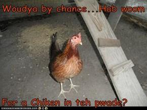 Woudya by chance...Hab woom   Fer a Chiken in teh pwade?