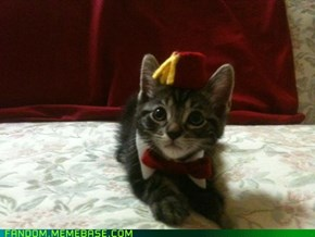 He wears a fez...