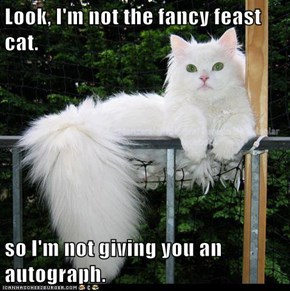 Look, I'm not the fancy feast cat.  so I'm not giving you an autograph.