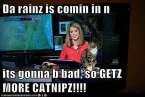 Da rainz is comin in n   its gonna b bad, so GETZ MORE CATNIPZ!!!!