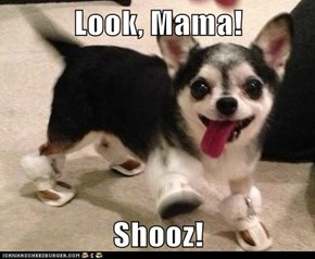 Look, Mama!  Shooz!