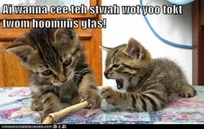 Ai wanna cee teh stwah wot yoo tokt fwom hoomuns glas!