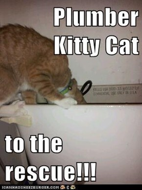 Plumber Kitty Cat  to the rescue!!!