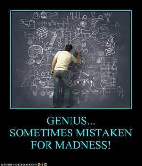 GENIUS... SOMETIMES MISTAKEN FOR MADNESS!