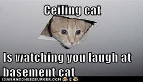 Ceiling cat  Is watching you laugh at basement cat
