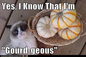 "Yes, I Know That I'm  ""Gourd-geous"""