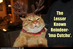 No, seriously. She does NAWT play any Reindeer Games!