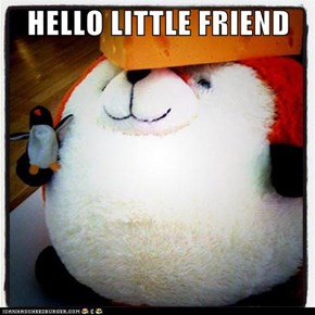 HELLO LITTLE FRIEND