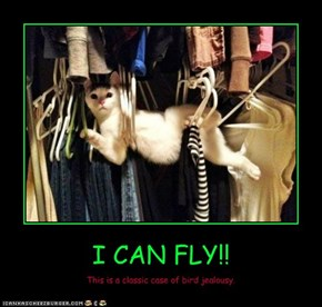 I CAN FLY!!