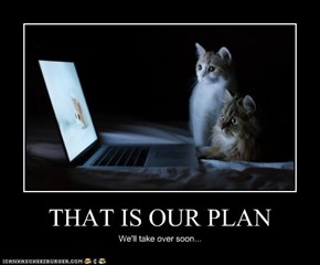 THAT IS OUR PLAN