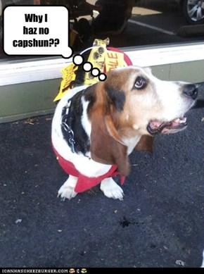 Why I  haz no capshun??