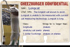 Cheezburger Confidential: Longcat