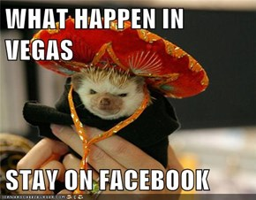 WHAT HAPPEN IN VEGAS  STAY ON FACEBOOK
