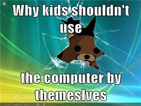 Why kids shouldn't use   the computer by themeslves