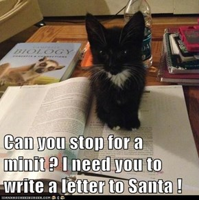 Can you stop for a minit ? I need you to write a letter to Santa !