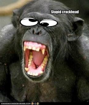 Stupid crackhead