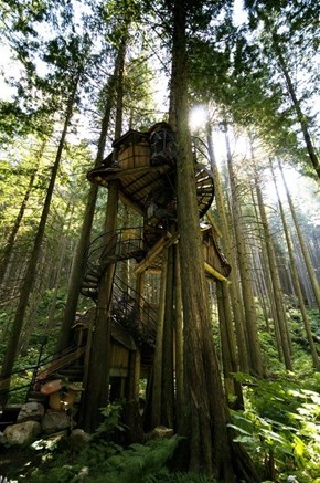 Tree House WIN