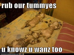 rub our tummyes  u knowz u wanz too