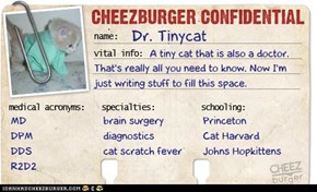 Cheezburger Confidential: Dr. Tinycat
