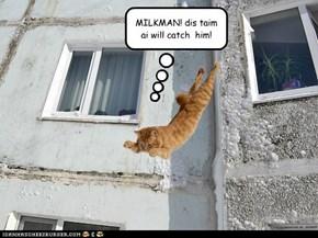 MILKMAN! dis taim ai will catch  him!