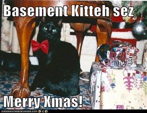 Basement Kitteh sez  Merry Xmas!
