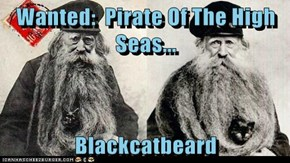 Wanted:  Pirate Of The High Seas...  Blackcatbeard