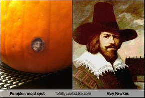 Pumpkin mold spot Totally Looks Like Guy Fawkes