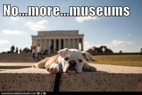 No...more...museums