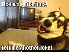 That was hilarious!  Tell me another joke!