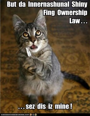Why it's better not to have a kitteh who's a lawyer.